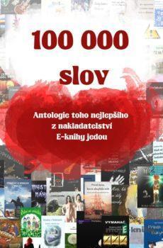 100 000 slov - Kolektiv autorů a autorek