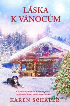 Láska k Vánocům - Karen Schaler